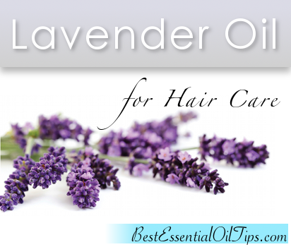 Lavender Essential Oil for Hair