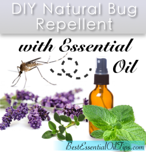 Top 5 Natural Bug Repellent Recipes using Essential Oils